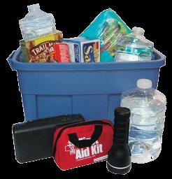 preparedness kit